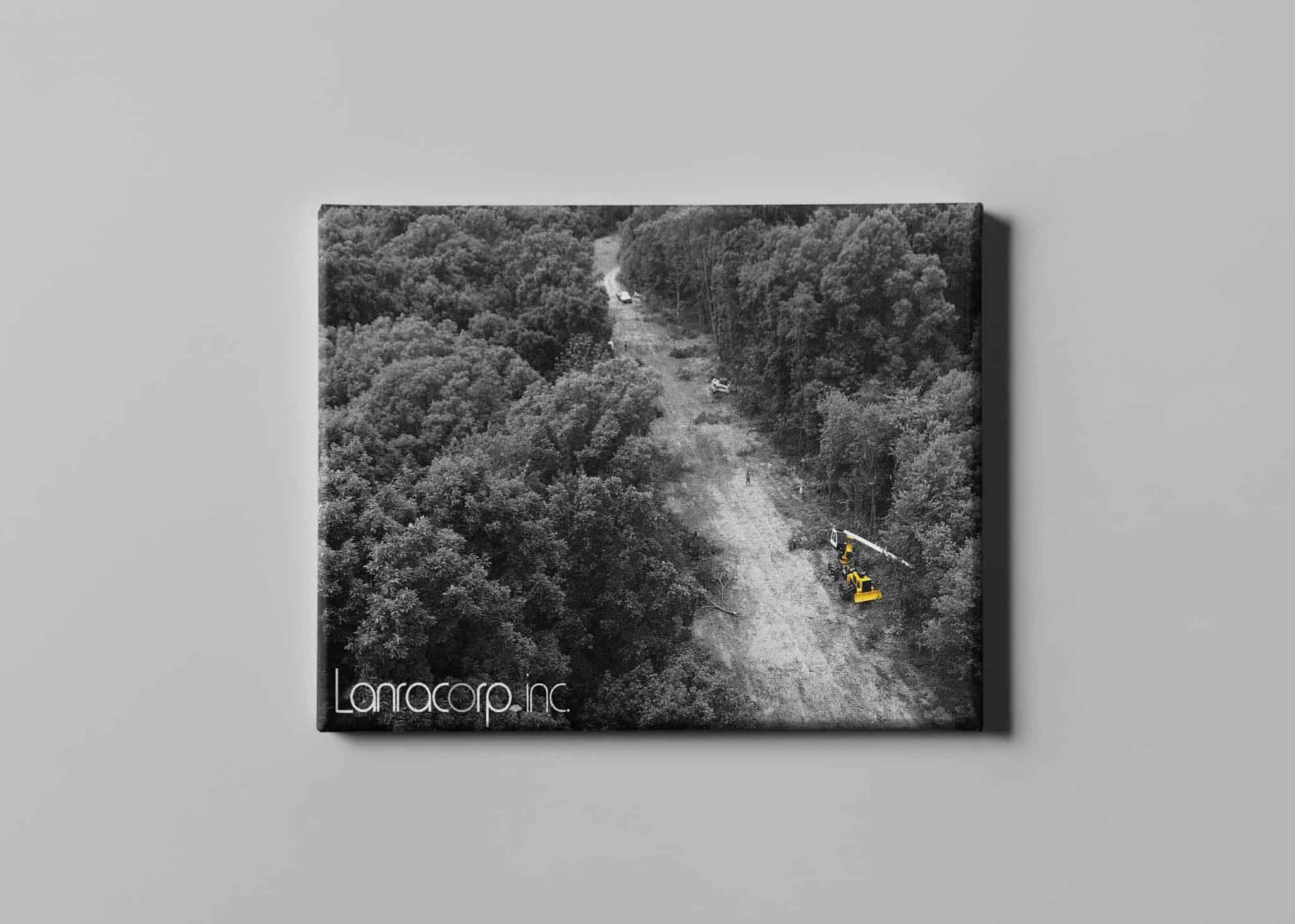 Lanracorp Canvas depicting black and white aerial photo of trees and a yellow tractor